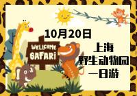 上海野生动物园一日游!开团啦~