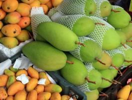 热带水果挑选技巧