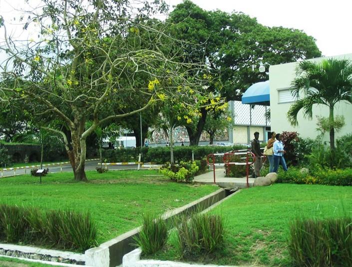 西印度大学