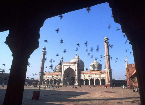 """印度Delhi"""""""""""