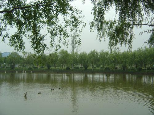 上海申隆生态园
