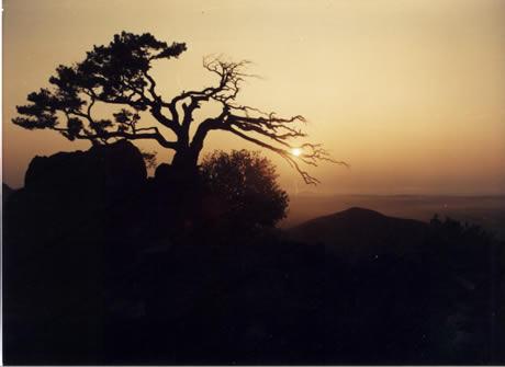 海棠山自然保护区