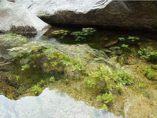 泰安徂徕山国家森林公园