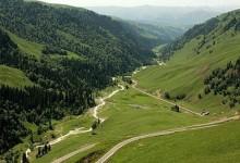 伊犁州那拉提胜境森林公园
