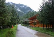 喇叭河森林公园AA