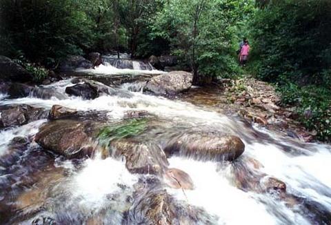 八仙山国家级自然保护区