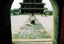 林节战国—汉代古文化遗址
