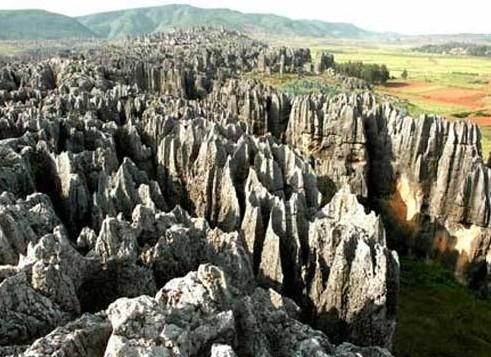 天津元古奇石林