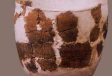 后七里海北岸战国—汉代古文化遗址
