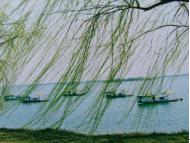 柳叶湖度假区