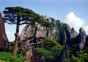 【山之灵】大美黄山、夹溪河激情漂流、新安江滨水旅游区特惠二日