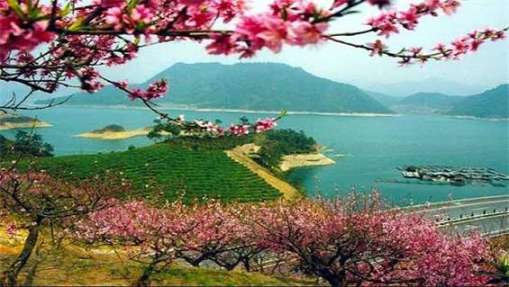 千岛湖【四星王牌度假】桂花岛 千岛湖欢乐水世界 四星