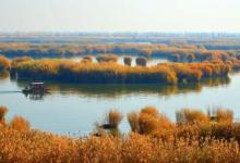 特价!宁波杭州湾国家湿地公园、鸣鹤古镇一日游(含游船)