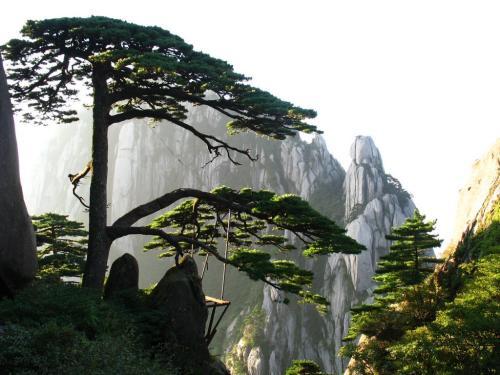 【春游特惠季】观黄山、水墨宏村、新安江山水画廊三日游