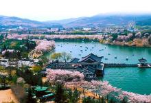 ·【暑假】 畅享济州5日5花酒店
