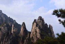 云南西双版纳野象谷、热带植物园、原始森林公园双飞五日游