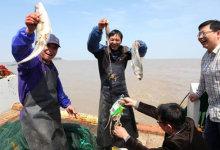 苍南出海捕鱼、品海鲜吃烤羊、篝火晚会沙滩KTV二日游