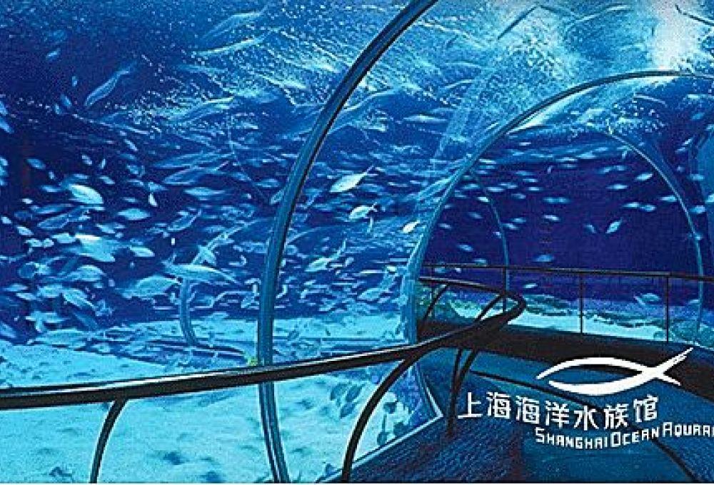上海长风海洋世界、乐高探索中心、世茂上海滩、南京路二日