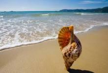 10月【海景纯玩】海南三亚呀诺达、蜈支洲岛、椰田古寨、南山等
