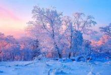 11月吉林雾凇、北极雪村、万达国际度假区、长白山天池、寒地温