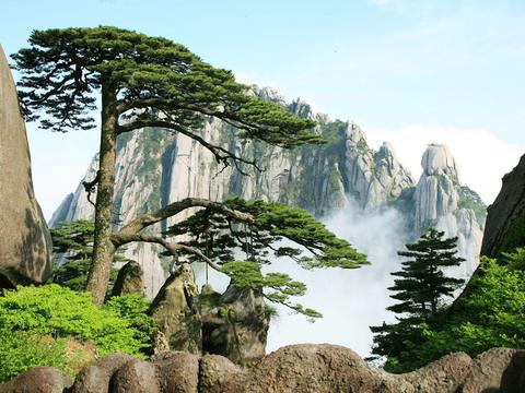 【山之灵】魅力黄山、九龙瀑品质二日游