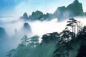 【春暖花开--武夷山专线】武夷山超值特惠三日游