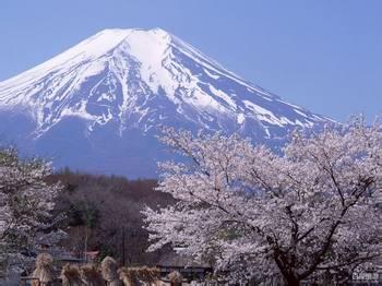 5月26号,6月5号】日本本州名胜名所****佳赏樱6日游!