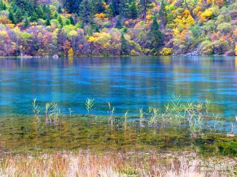 10月【漫游贵州】黄果树景区千户苗寨多彩贵州城双飞4日游