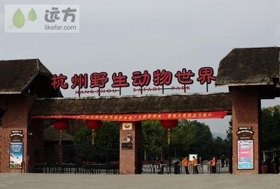 ·亲子游】杭州野生动物园百兽狂欢、冰雪动物城亲子特价一日