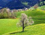 出境旅游系列--德国、奥地利、瑞士升级12日游(11-12)
