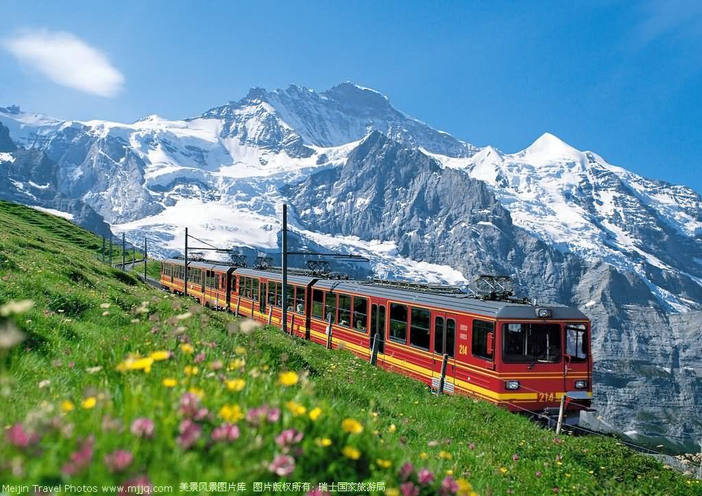 出境旅游系列--瑞士+法国精品深度11日游(11-12月!)