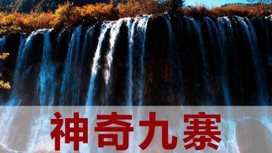6、7月【神奇九寨】绵阳、成都、九寨沟、乐山大佛、黄龙溪古镇