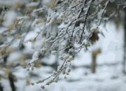 """绍兴周末天气""""冻""""真格!降温+大风,还会有雪吗?"""