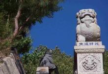 剑川满贤林景区