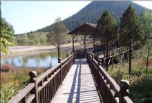 湖山森林公园