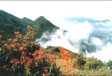 雨台山风景区