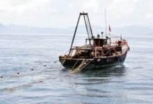 【捕鱼】温岭金沙滩海滨浴场、石塘出海拖网捕鱼、长屿硐天二日