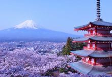 日本本州京都奈良双古都、富士山赏秋六日游