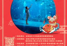 春节 三亚一套5日游 三亚进出