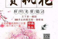 """3月28日铁定发团,宁波奉化""""天下第一桃园一日游""""100元/"""