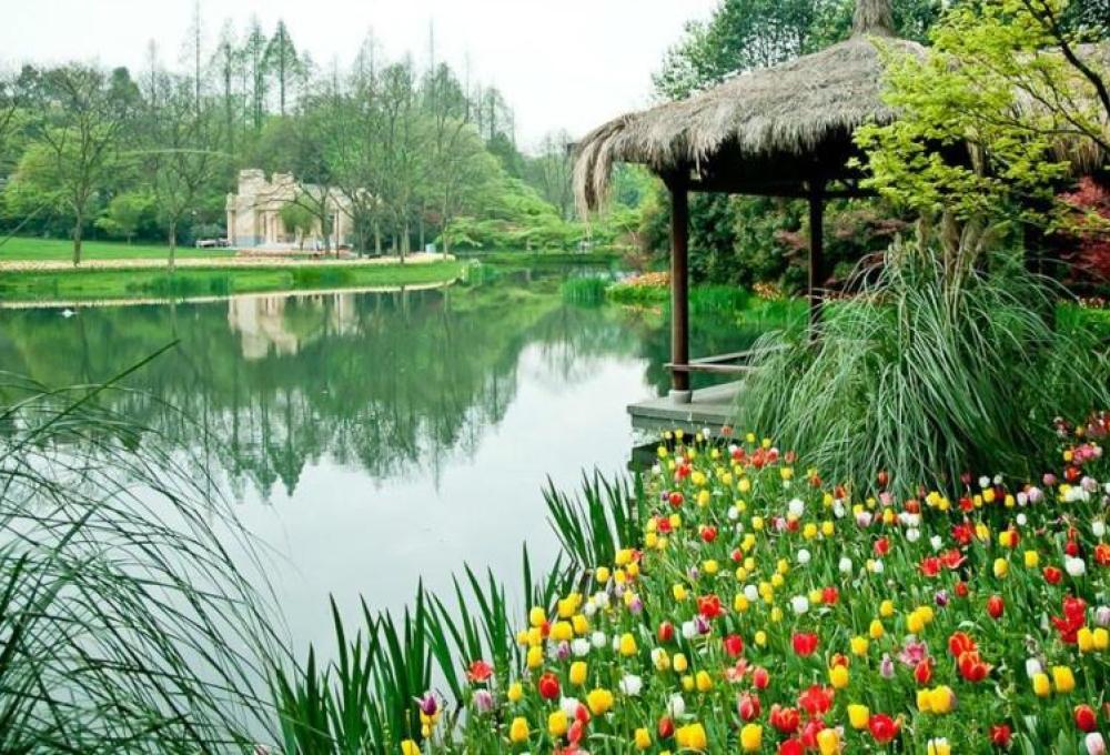 【浙江人游浙江】杭州太子湾、西湖花港观鱼、飞来峰一日游
