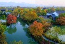 [4.5/4.6已成团] 杭州西溪湿地、蒋村集市休闲一日游