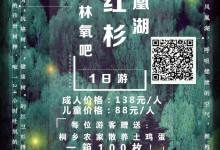 04月05日铁定发团138元/人嘉兴红杉邨、凤凰湖春日森林氧